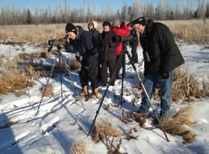 Birders in a field with tripods.