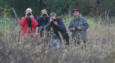 Several birders in a field looking through binoculars and cameras.