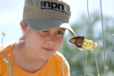 A little girl with a baseball cap kneeling down on the ground looking at a butterfly sitting on top of a flower.